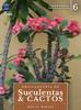 Enciclopédia de Suculentas & Cactos: Volume 6