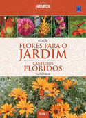 Flores para o Jardim: Canteiros Floridos