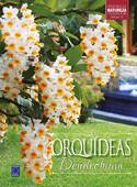 Coleção Rubi Volume 10 - Orquídeas Dendrobium